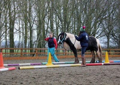 Equine therapy 1